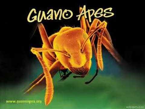 "Текст песни ""Open Your Eyes"", исполнитель Guano Apes"